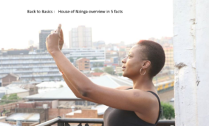 Back to Basics- House of Nzinga overview in 5 facts